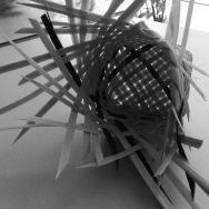 cesteria palma 1