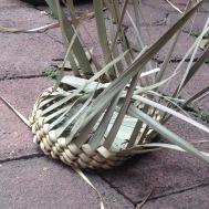 cesteria palma 7